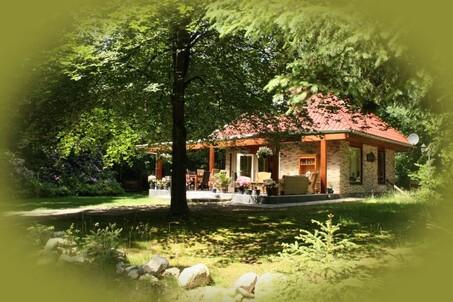 Particulier huisje met omheinde tuin voor uw hond in Drenthe
